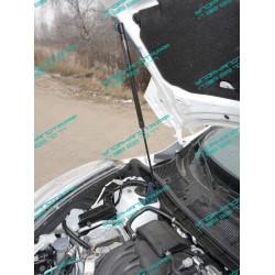 Упоры капота на Nissan Juke NISJUK2WD14-10Y