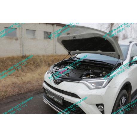 Упоры капота на Toyota Rav 4 TOYRAV15-10Y