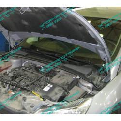 Упоры капота на Ford Focus 3 UP 2734
