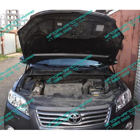 Упоры капота на Toyota Rav 4 BD14.07