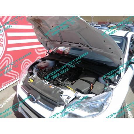 Упоры капота на Ford Focus 3 BD02.04