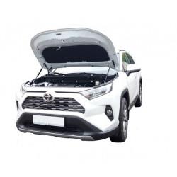 Упоры капота на Toyota RAV 4 15-08