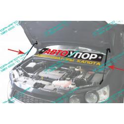 Упоры капота на Chevrolet Aveo UCHAVE011