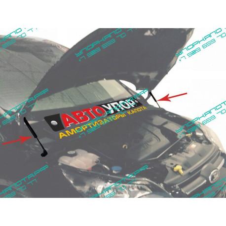 Упоры капота на Ford Focus 3 UFDFOC021