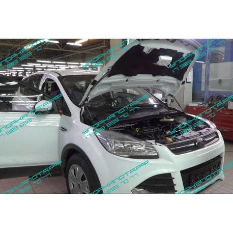 Упоры капота на Ford Kuga KU-FD-KG02-00