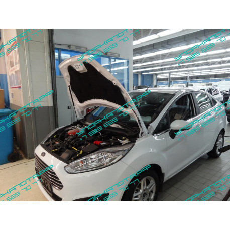 Упоры капота на Ford Fiesta KU-FD-FI06-00