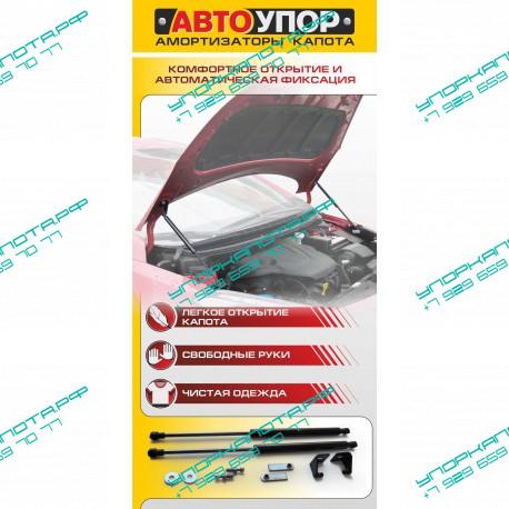 Упоры капота на Mitsubishi Pajero Sport UMIPAS011