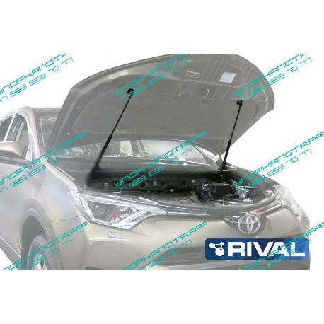Упоры капота на Toyota Rav 4 A.ST.5707.1