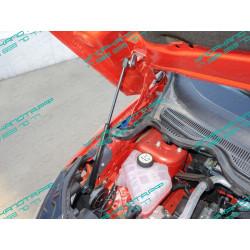 Упоры капота на Ford Ecosport FORECOSPOR14-21Y