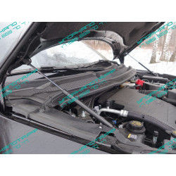 Упоры капота на Ford Explorer FOREXPL16-05Y