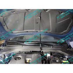 Упоры капота на Hyundai Elantra HYUNELA16-01Y