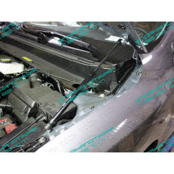 Упоры капота на Nissan Pathfinder NISPAT14-21Y