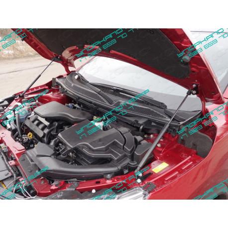 Упоры капота на Nissan Qashqai NISQASHSPB15-23Y