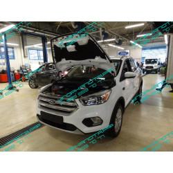 Упоры капота на Ford Kuga KU-FD-KG02-02