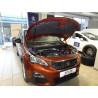 Упоры капота на Peugeot 3008 KU-PG-3008-00