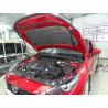 Упоры капота на Mazda 3 KU-MZ-0300-00