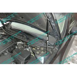 Упоры капота на Nissan Teana BD09.07