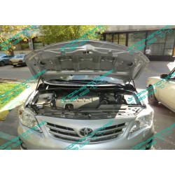 Упоры капота на Toyota Corolla BD14.01