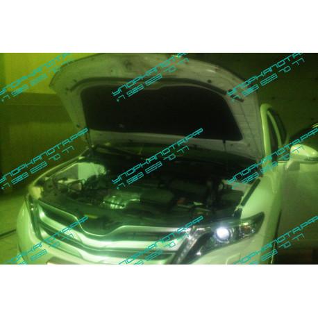 Упоры капота на Toyota Venza BD14.06
