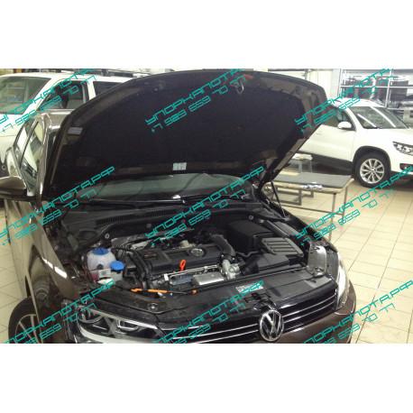 Упоры капота на Volkswagen Jetta BD15.01
