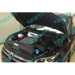Амортизатор (упор) капота на Volkswagen Tiguan BD15.05