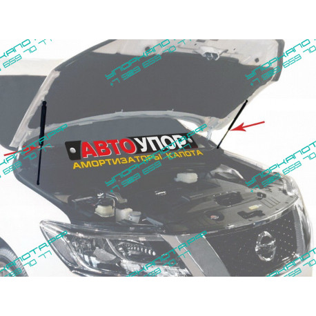 Упоры капота на Nissan Pathfinder UNIPAT021