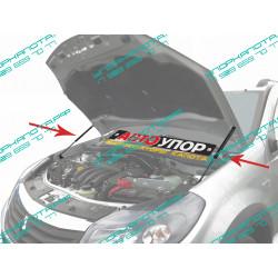 Упоры капота на Renault Sandero URESAN/STW011