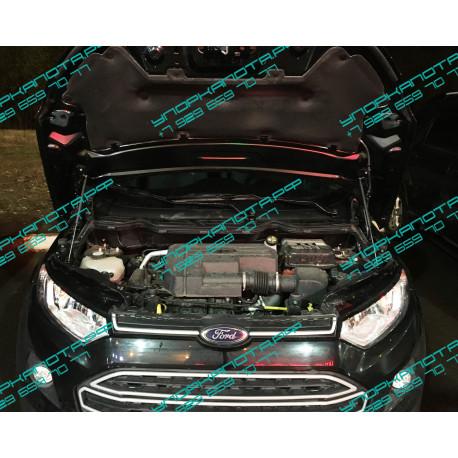 Упоры капота на Ford Ecosport BD02.08