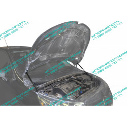 Упоры капота на Citroen C4 UCIC4011